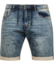 Protest Mens Ipswich Shorts