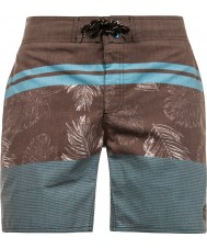 Protest Mens Radius Beachshorts